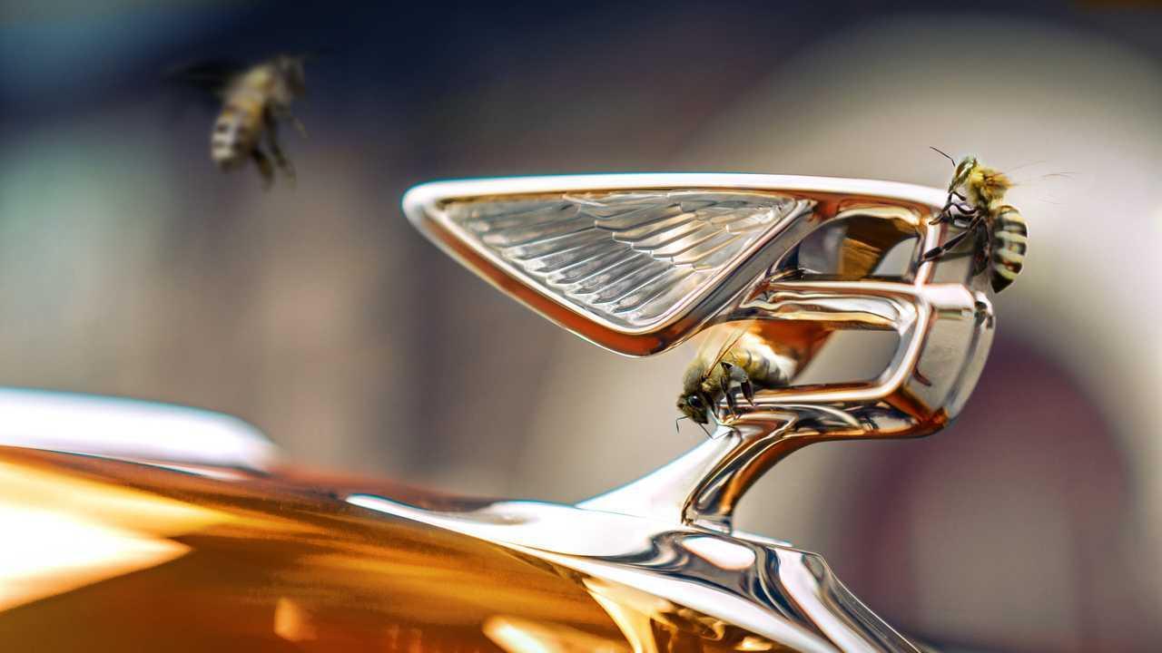 A Bentley újradefiniálja repülõ méhét