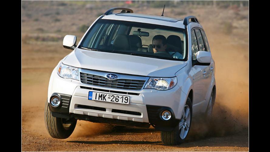 Neuer Subaru Forester kommt: Soviel kostet der Offroadspaß