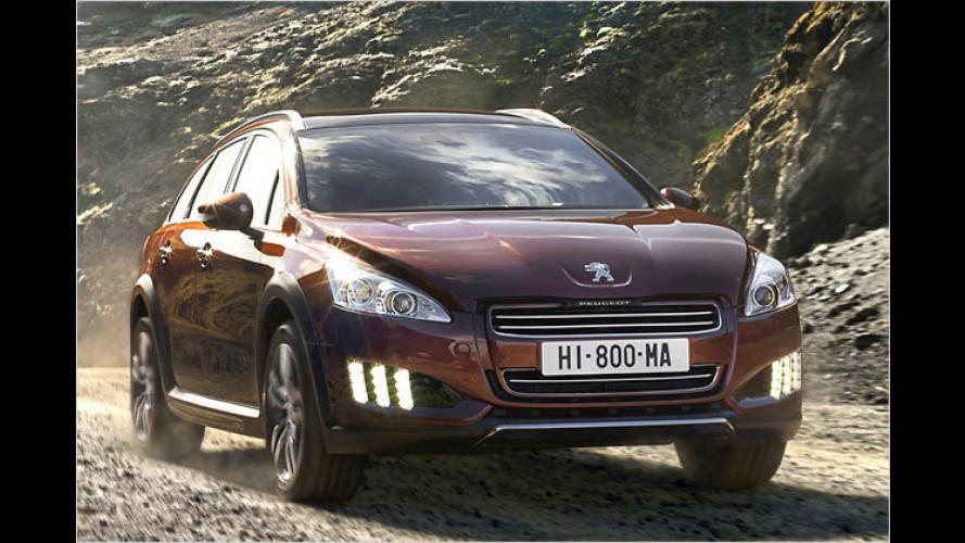 Peugeot 508 RXH: Bald kommt die Dieselhybrid-Mittelklasse