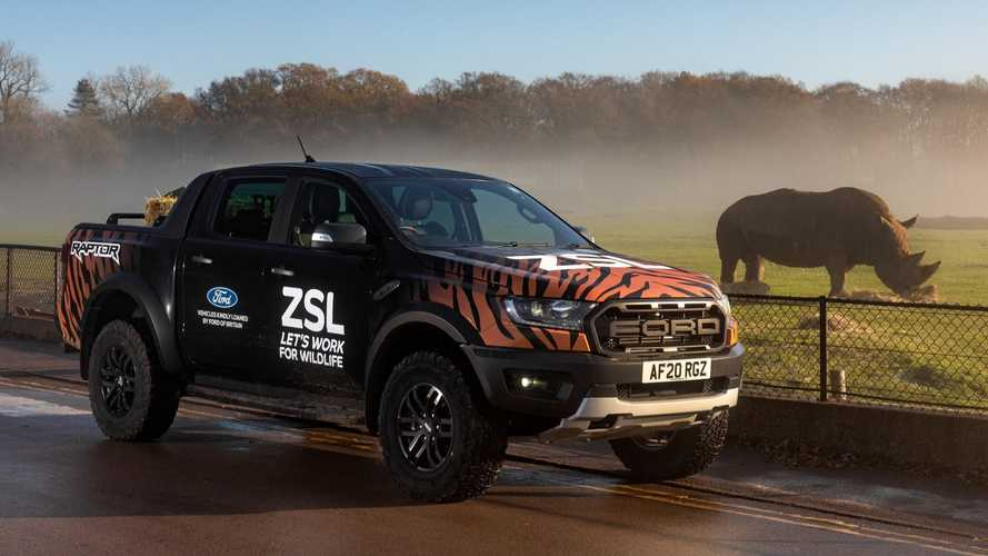 UK zoo gets dream Christmas present with two Ford Ranger Raptor pick-ups