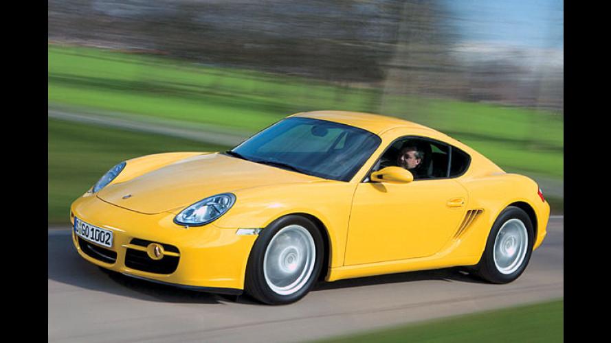 Porsche: Das Krokodil aus Zuffenhausen bekommt Zuwachs