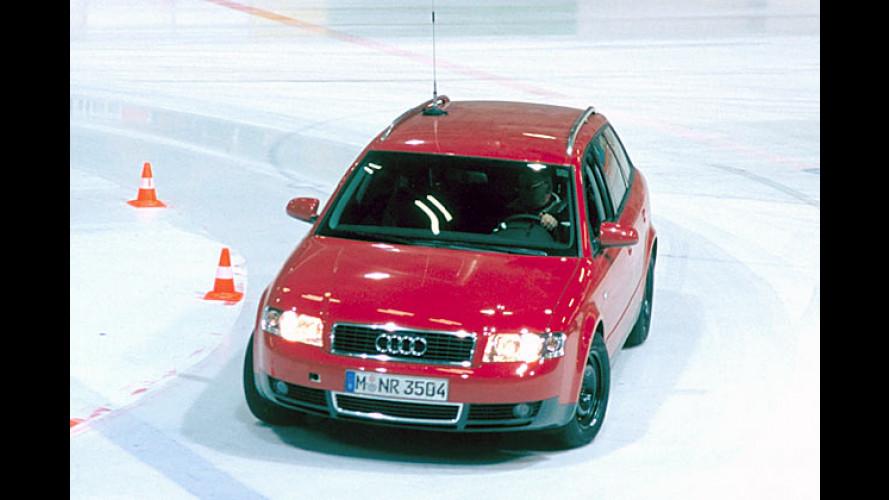 ADAC Winterreifen-Test 2004: 35 Pneus in zwei Dimensionen