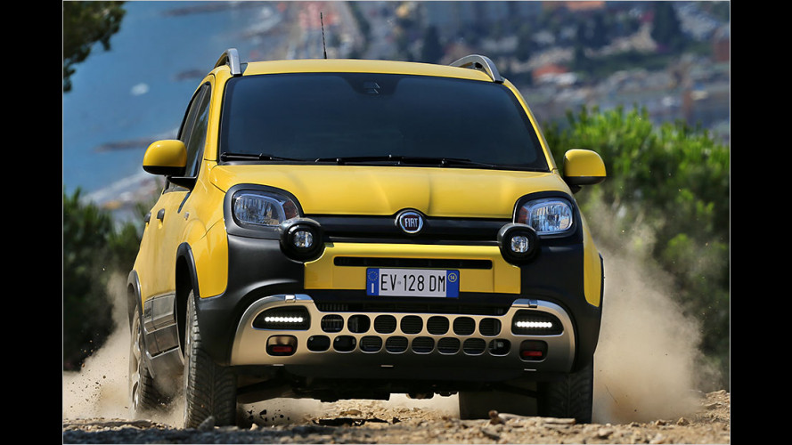 Fiat Panda Cross 2014 im Test