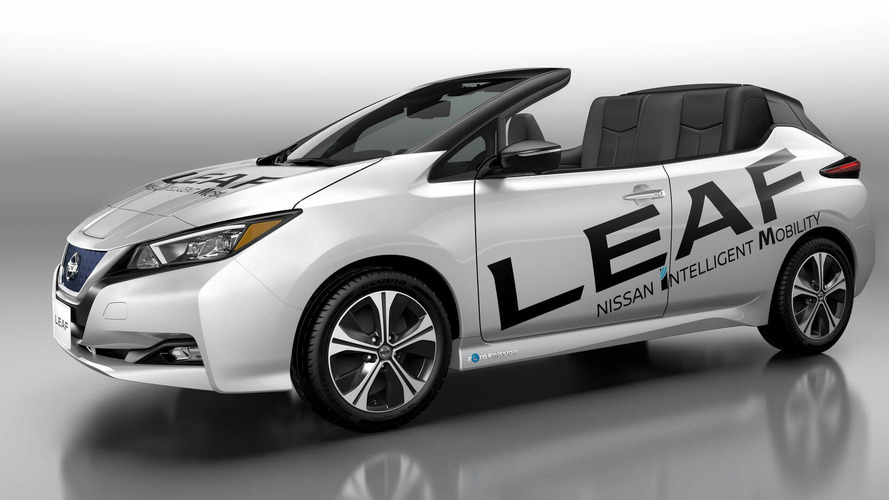 Nissan Leaf Open Car