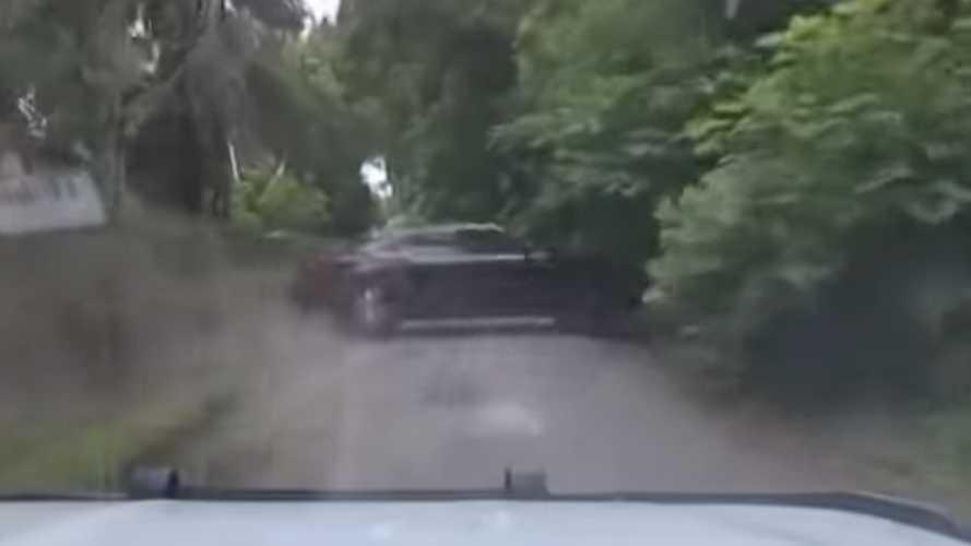 Videó: Egy floridai rendőrkutya megmutatja, miért nagyon rossz ötlet elfutni a rendőrök elől