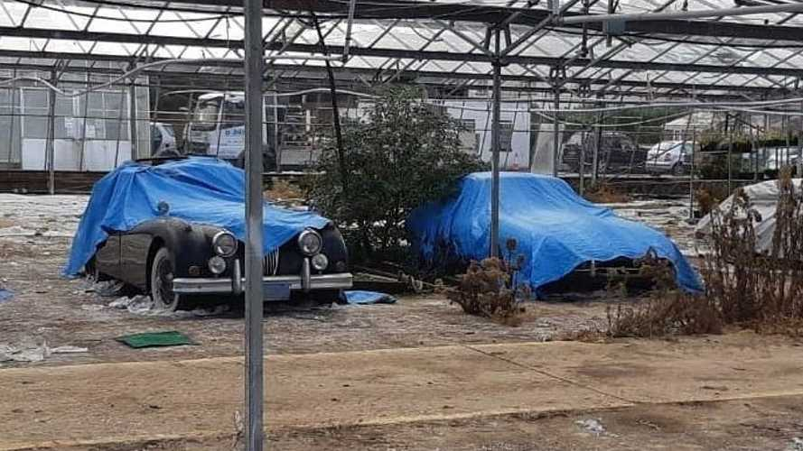 About 30 Classic, Corroded Jaguars Found In English GreenHouse