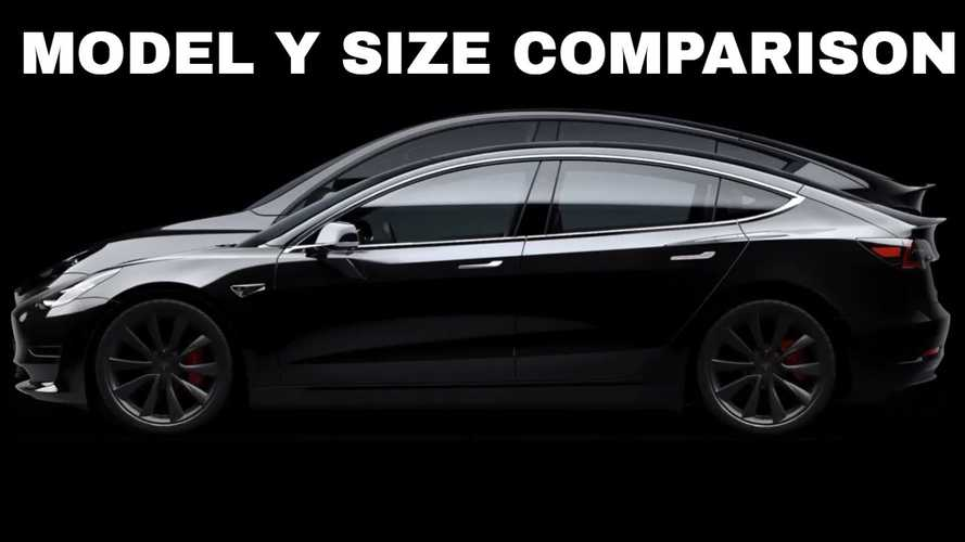 Tesla Model Y Versus Model 3: Size Comparison