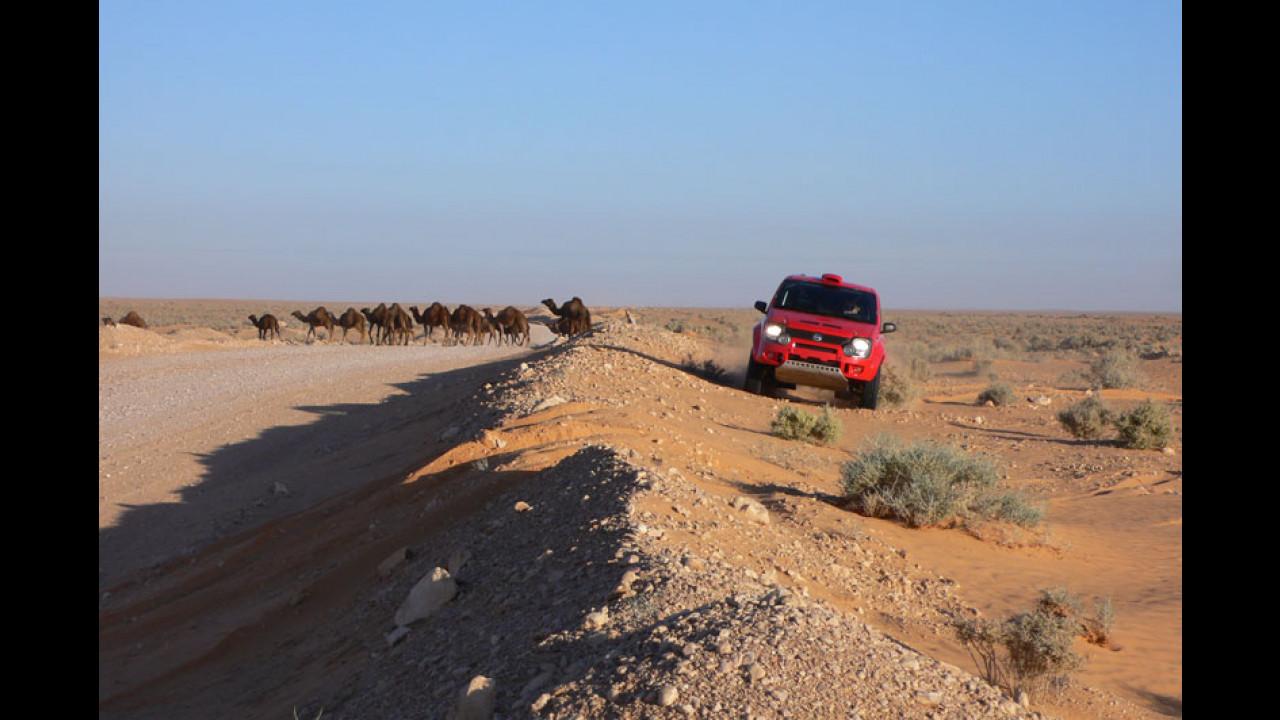 Fiat Panda Dakar 2007