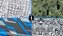 automaker camouflage spy photos quiz