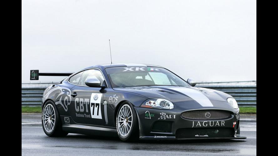 Jaguar XKR in versione FIA GT3