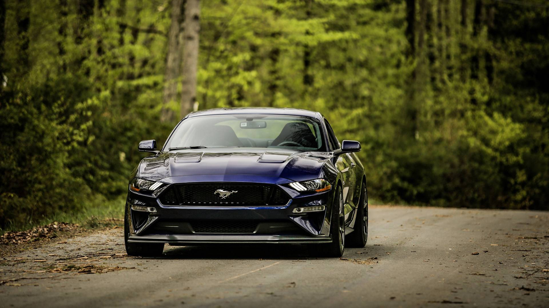 2018 ford mustang gt performance package level 2 first drive a