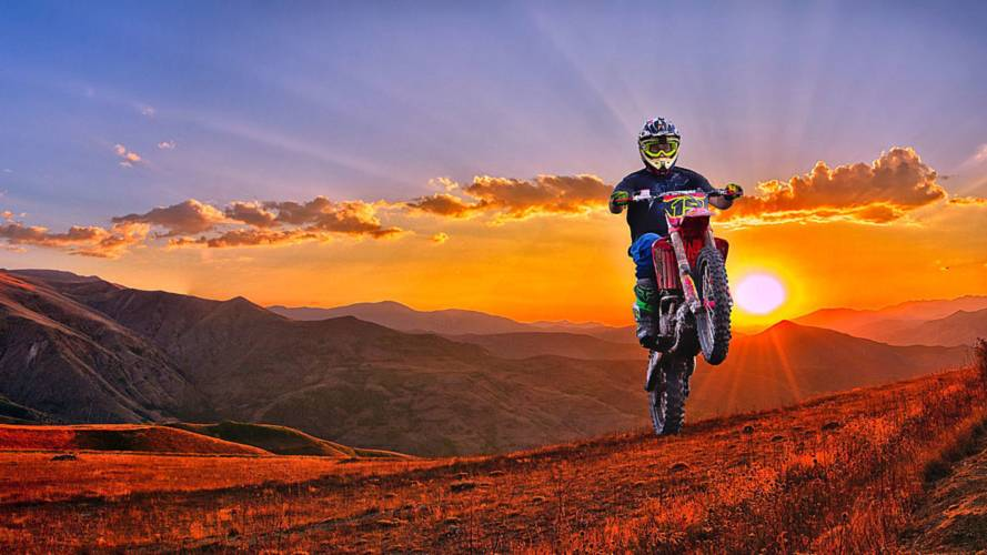 Moto Planet, Red Bull's Take on the Animal Documentary