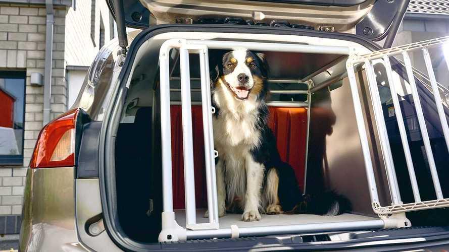 Hunde-Transportbox für den Ford Focus Turnier