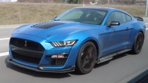 Ford Mustang Shelby GT500 Spy Video