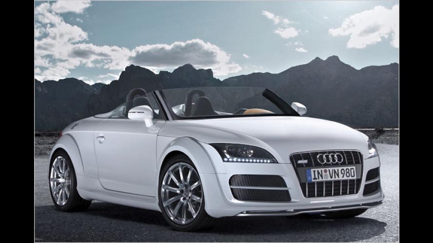 Clubsport-Invasion: Audi präsentiert TT im Speedster-Look
