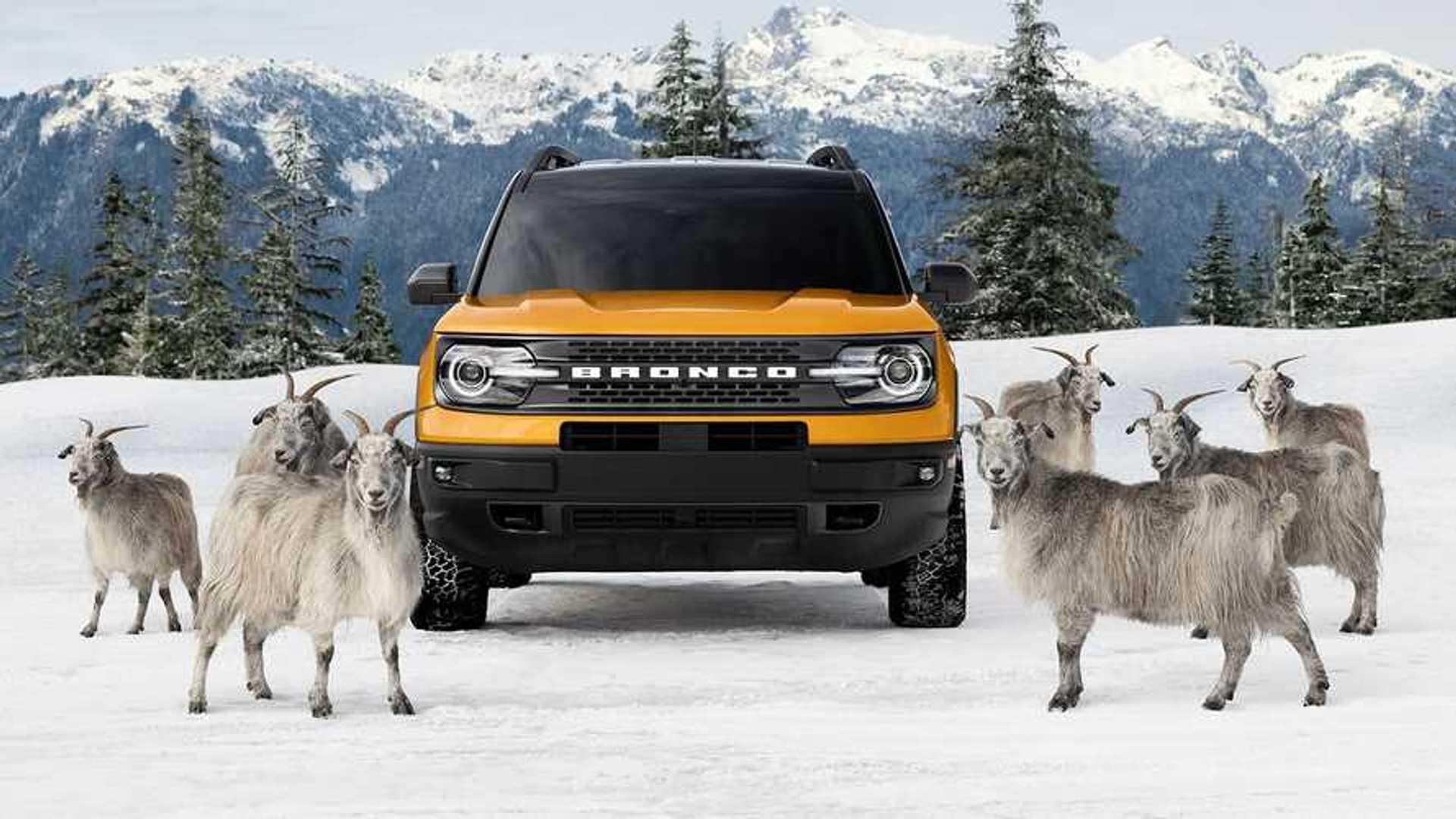 В новой рекламе Ford говорится, что Bronco Sport был выращен горными козами