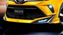 Modellista Gövde Kitlerine Sahip 2020 Toyota C-HR'lar