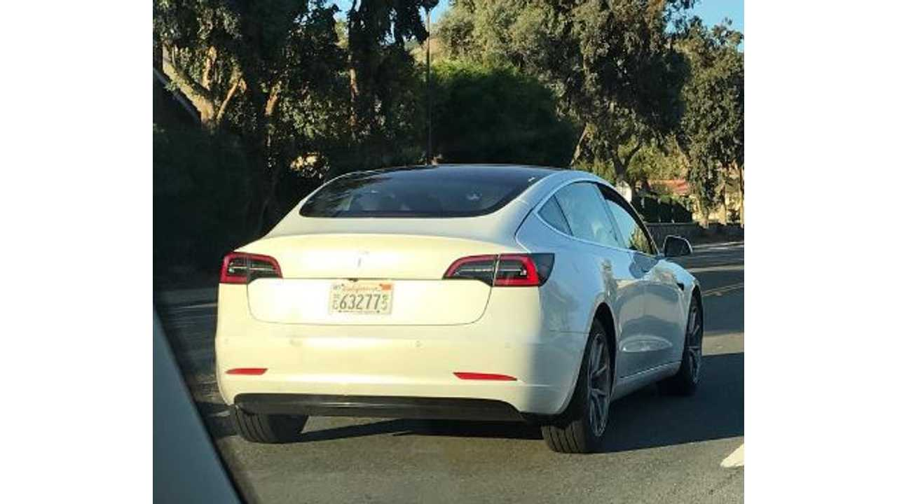 White Tesla Model 3 Sightings, One With Roof Rack
