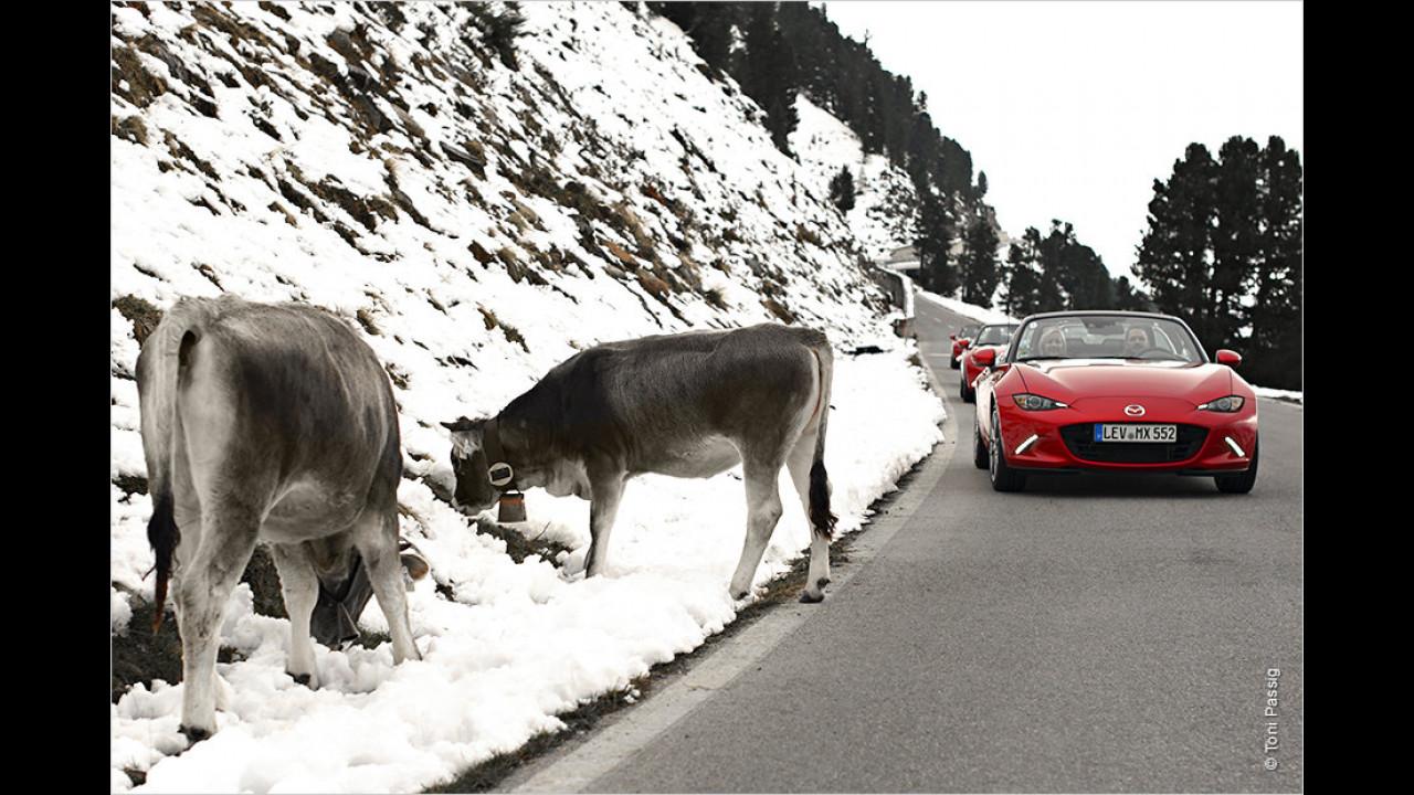 Auf Kurvenjagd im neuen Mazda MX-5
