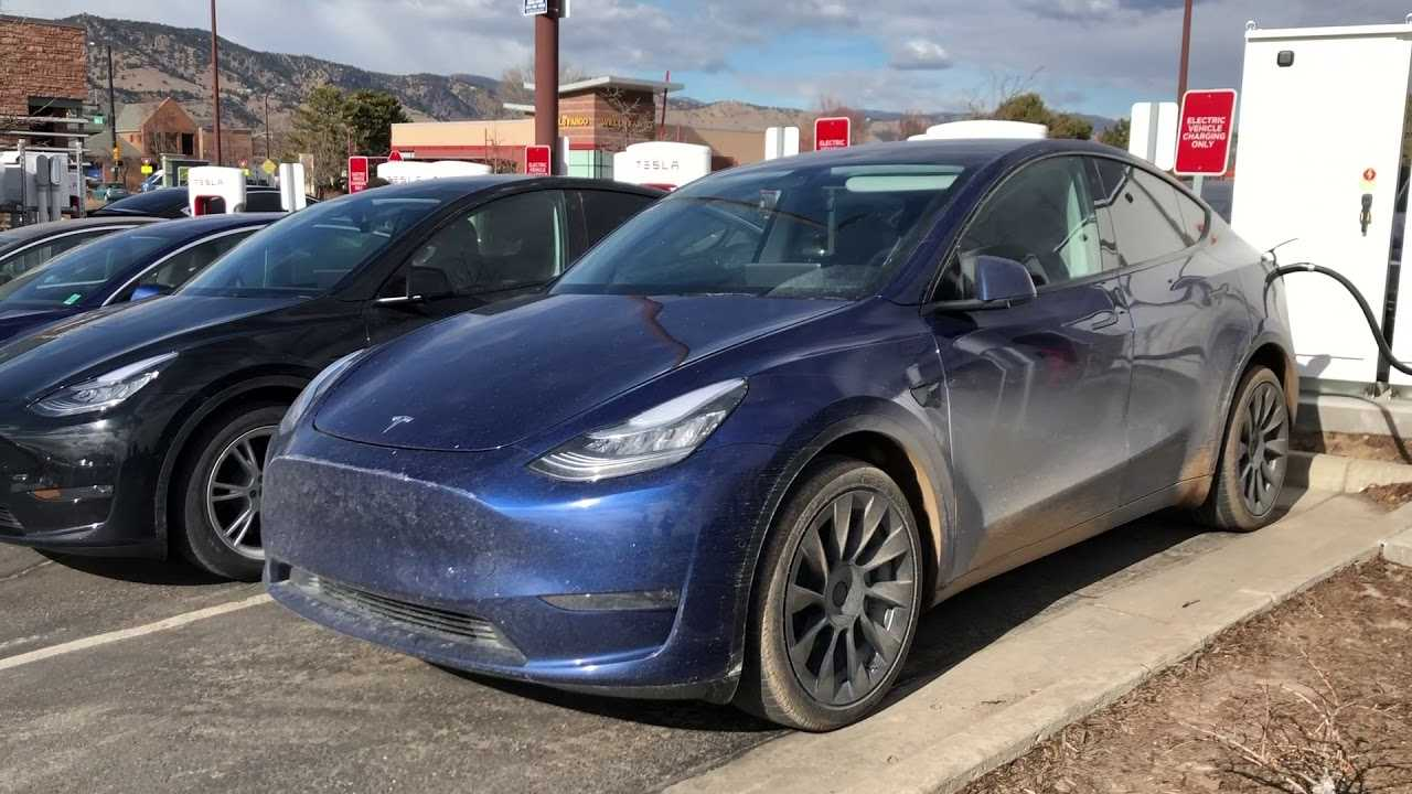 Two tesla model y in the wild