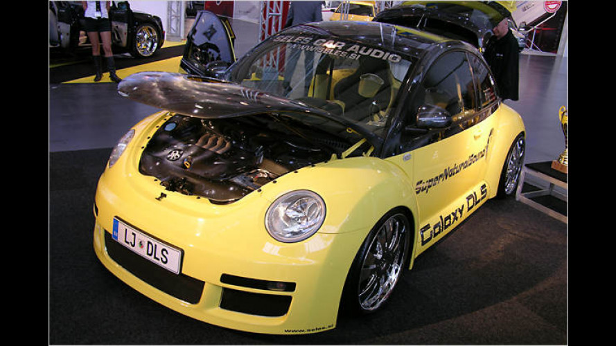 Car-Audio-Extreme: Die Car + Sound 2007 beschallt Deutschland