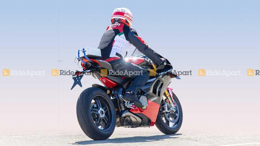 Ducati Panigale V4 Superleggera, le foto-spia