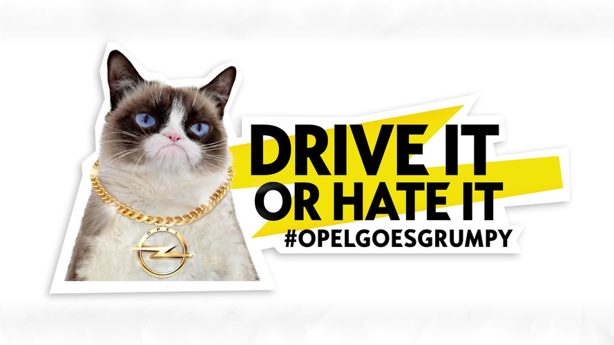 Opel Grumpy Cat ve Georgia May Jagger takvimi