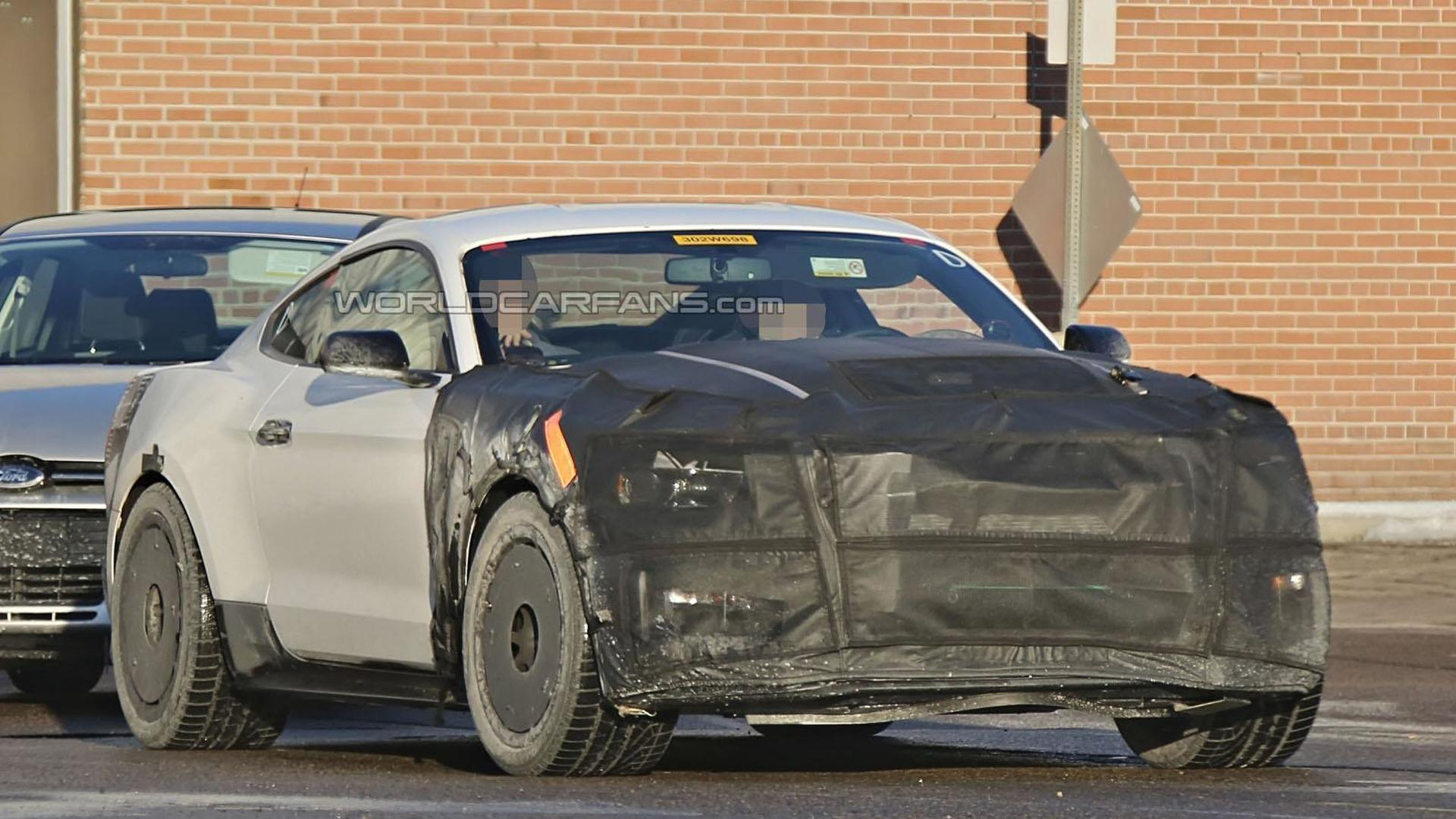 Shelby Gt500 2016 >> 2016 Ford Mustang Shelby Gt350 Gt500 Spied Wearing Less