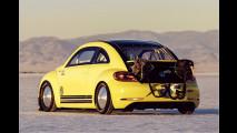 Super-Käfer auf Speed