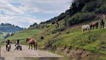 The Adventurists Monkey Run Romania