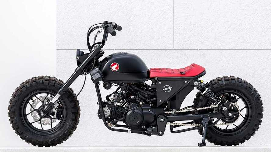Check Out This Rad Custom Honda Monkey Bobber
