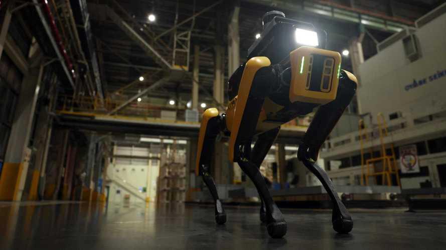 Hyundai'nın robot köpeği, fabrikada işbaşı yaptı