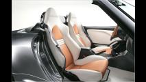 Babysize-Roadster