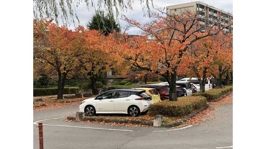 Japan Still Consumes 2,000+ LEAFs Per Month