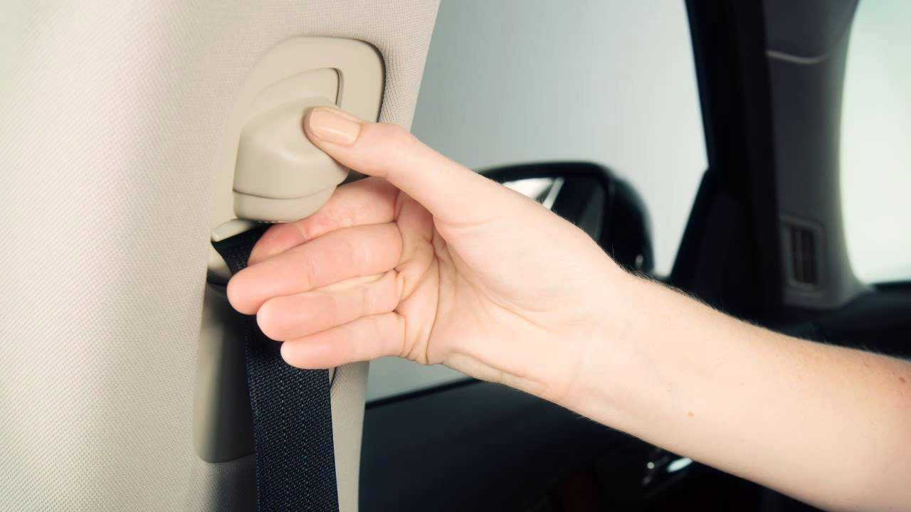 Ajuste en altura de todos los cinturones de seguridad