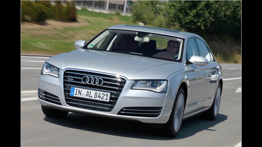 Audi A8 (2010): Als Langversion W12 und 250-PS-Dieselvariante im Test