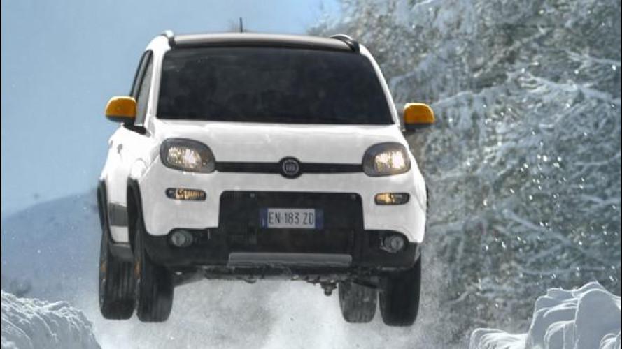 Fiat Panda 4x4 Antartica, i prezzi