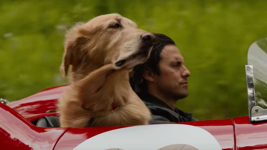 The Art Of Racing In The Rain trailer will tug at your dog-loving hearts