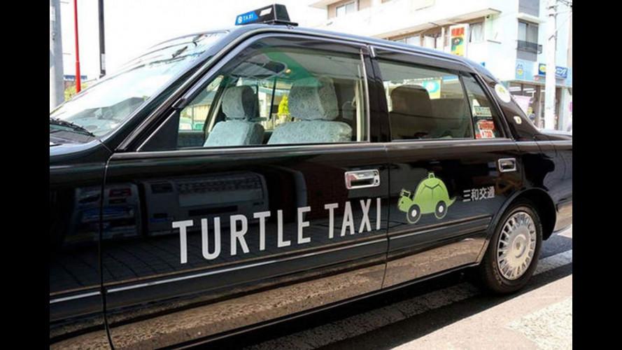 Taxi Tartaruga, l'obiettivo è andare più piano possibile [VIDEO]