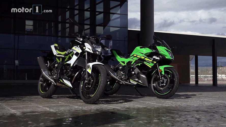 Essai Kawasaki Z 125 & Ninja 125 - Les verts sont de retour