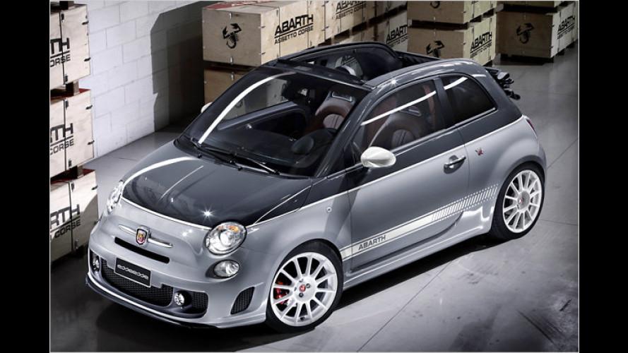 M, RS, AMG & Co.: Die stärksten Serienautos