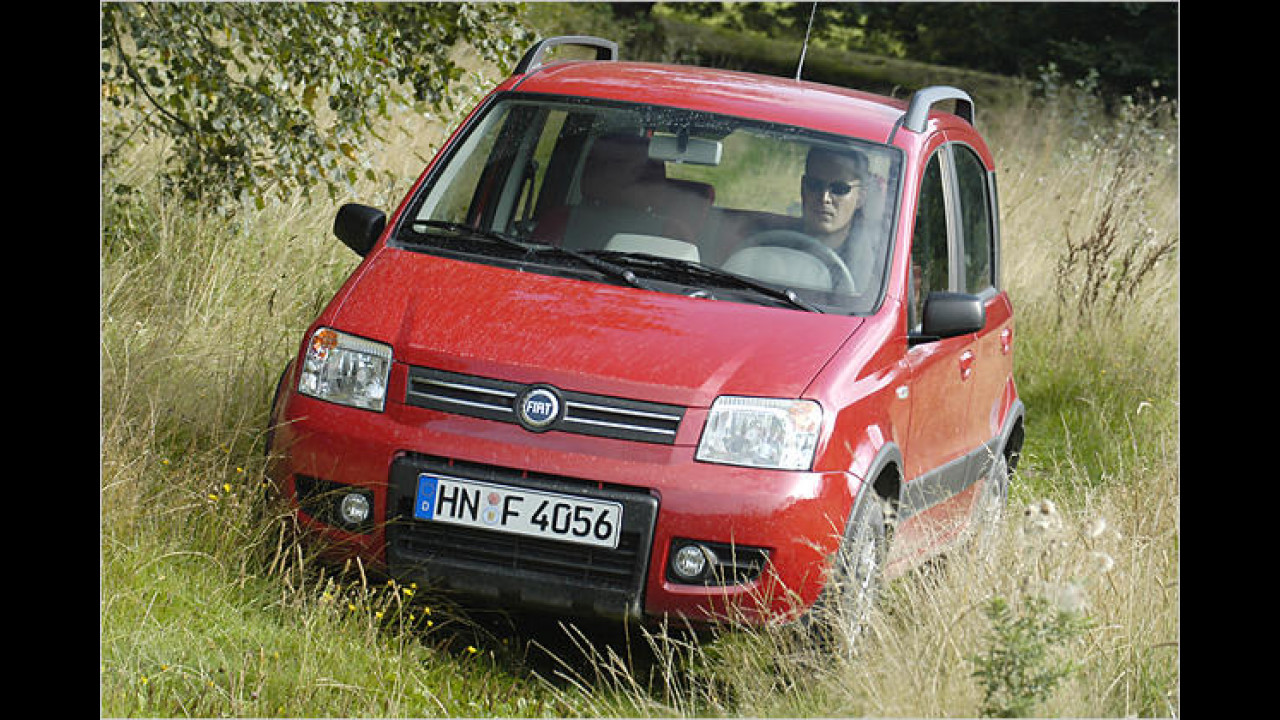 Fiat Panda 1.3 JTD Multijet 16V 4x4