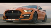 Shelby GT500 Versus Ferrari And Porsche