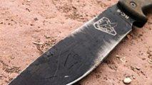 honda nc700x the swiss army knife of bikes