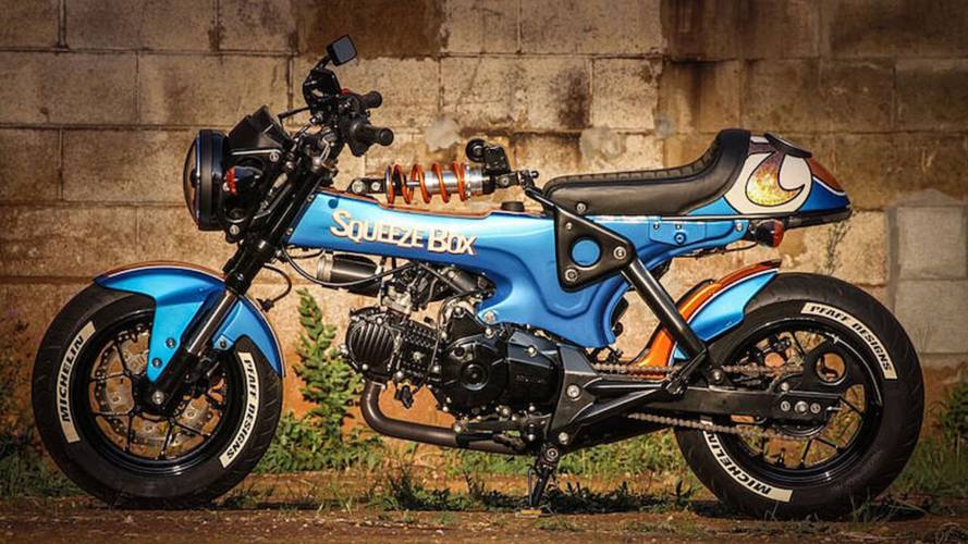 Bike of the Week: Pfaff Designs' Squeeze Box