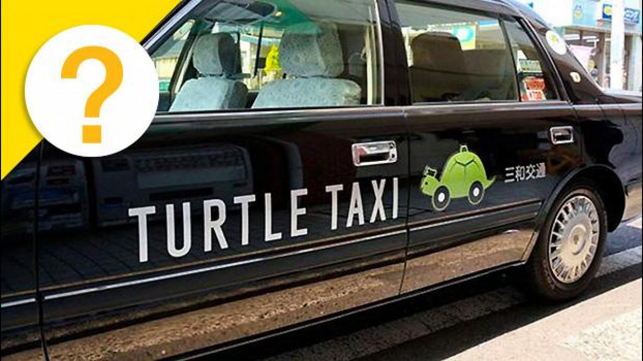 [Copertina] - Taxi Tartaruga, l'obiettivo è andare più piano possibile [VIDEO]