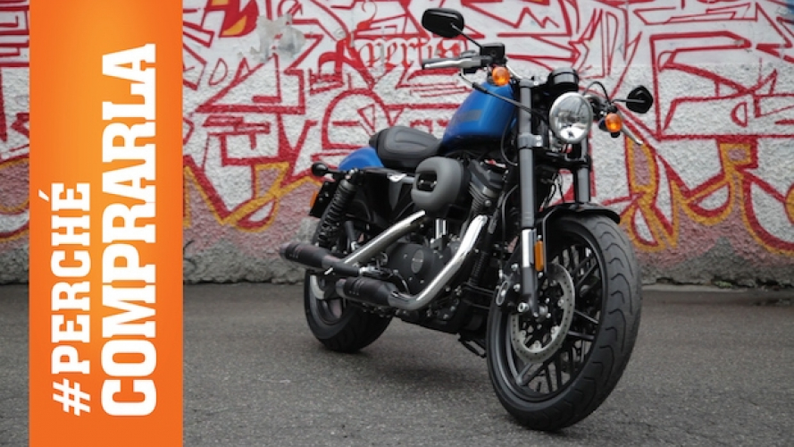 Harley-Davidson Roadster 1200: Perché comprarla... e perché no [VIDEO]