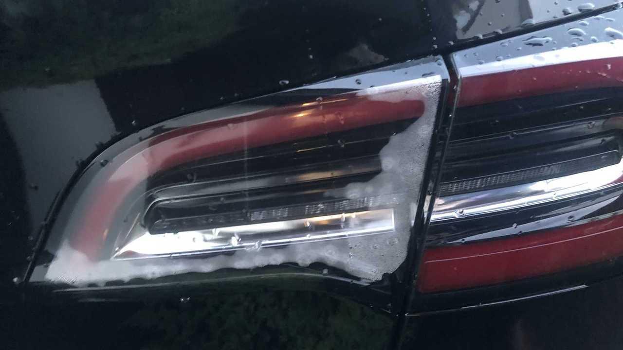 Taillight condensation