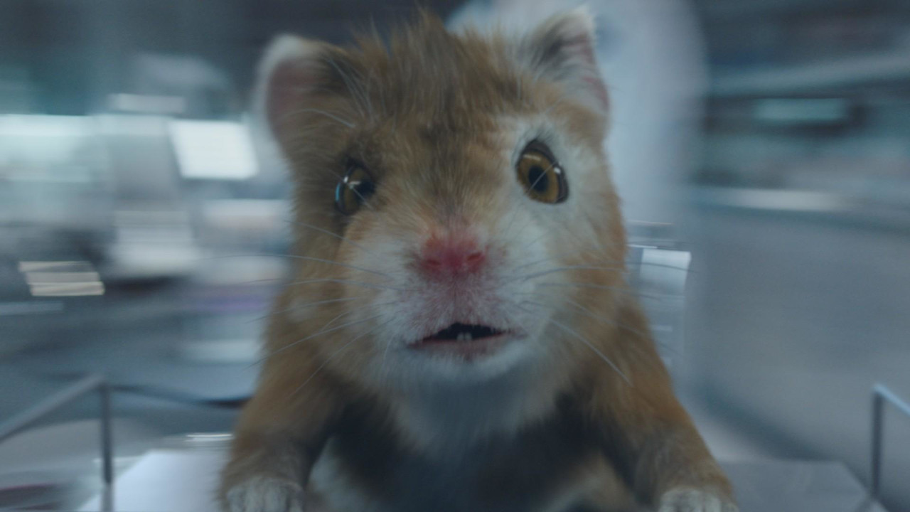 Kia Soul Turbo >> Kia's Hamsters Return With A Little One In Eighth Commercial