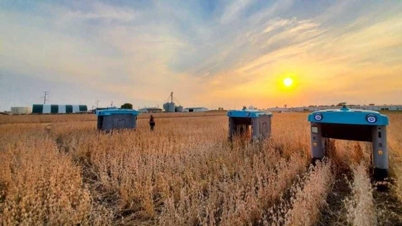 Google robot agricolo guida autonoma